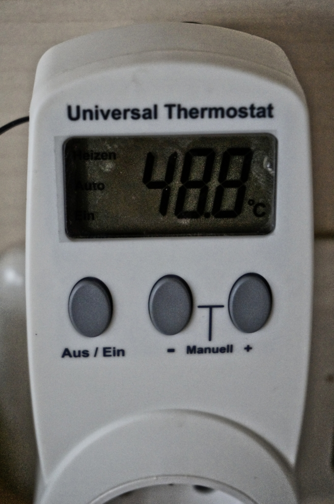 Der Thermostat
