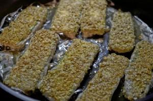 Zucchini Schnitzel I