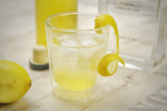 Gin Tonic aus selbstgemachten Tonicsirup