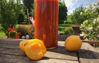 Selbstgemachter Aprikosenketchup